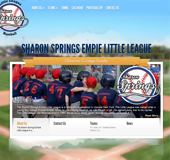 SharonSpringsLittleLeague